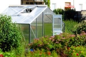 Glashaus - Gartentipps für Mai
