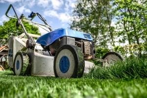 Bringen Sie jetzt Ihren Rasen in Form - Gartentipps für Mai