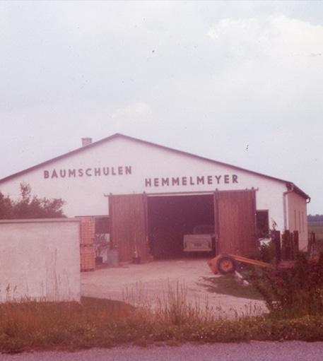 1975 Umstellung auf Containerpflanzen