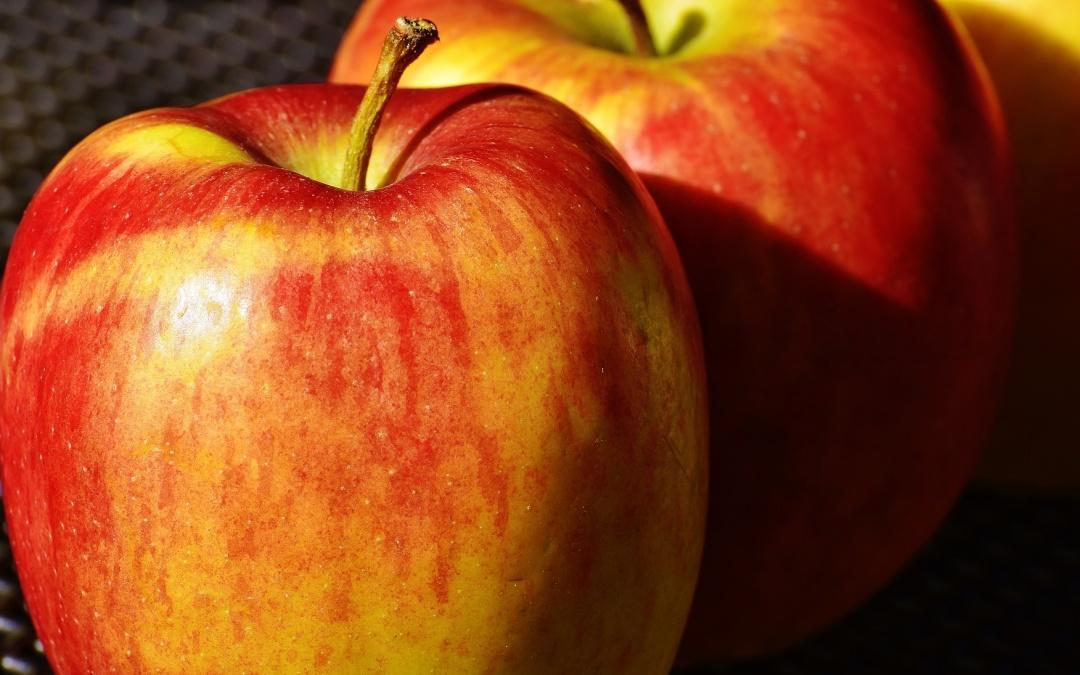 Äpfel richtig ernten und lagern